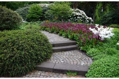 Бадан и сад в восточном стиле