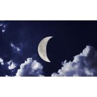 Лунный календарь для садоводов на март