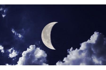 Летние работы в саду: лунный календарь на июль месяц