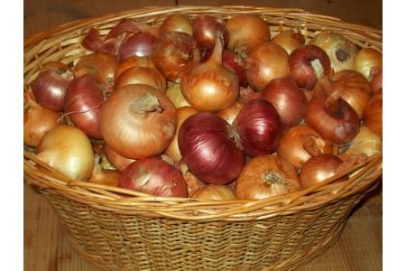 Полезные советы по зимнему хранению овощей