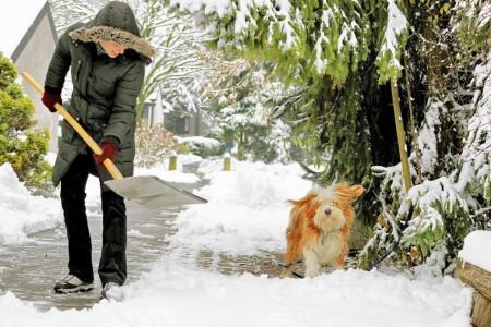 Уборка снега на дачном участке