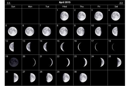 Лунный календарь, или как планировать работы по уходу за садом