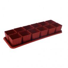 Ящик для рассады 12 горшковх650мл