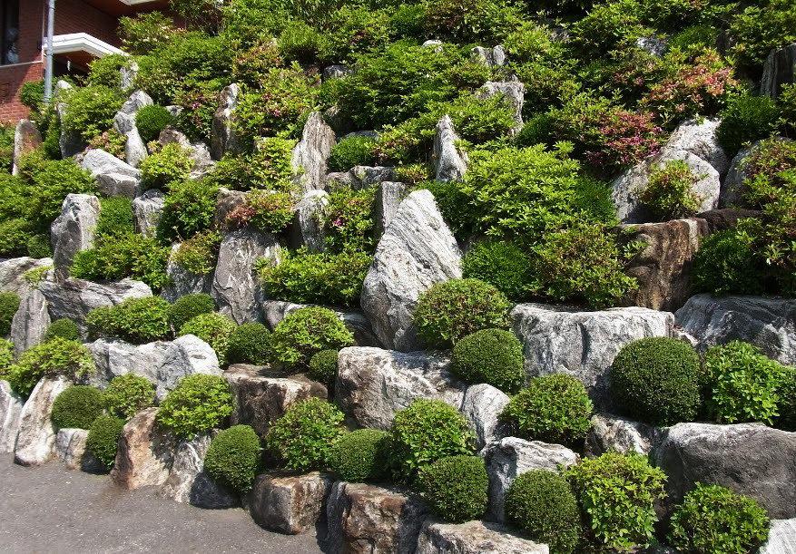 Каменистые сады